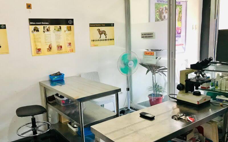 harbourside veterinary clinic